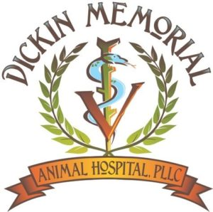 Your Choice Pet Boutique at Dickin Memorial is Now Open - Greater